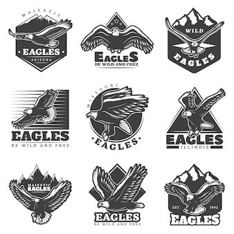 Conjunto de etiquetas vintage monocromático águias americanas