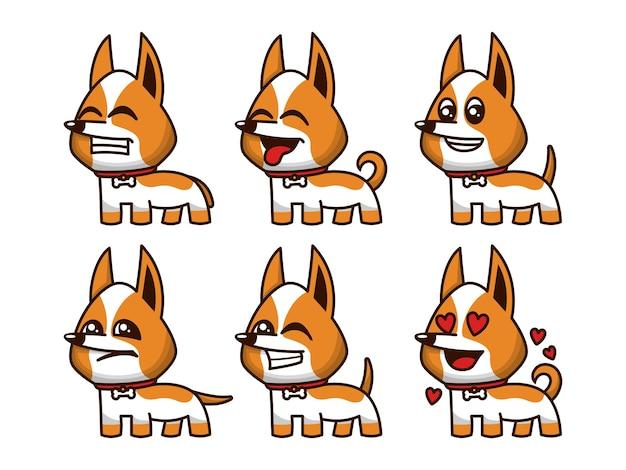 Conjunto de expressão de cão corgi