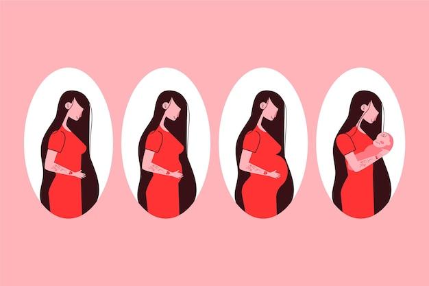 Conjunto de fases da gravidez ilustrado