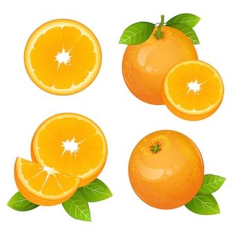 Conjunto de fatia de fruta laranja suculenta fresca
