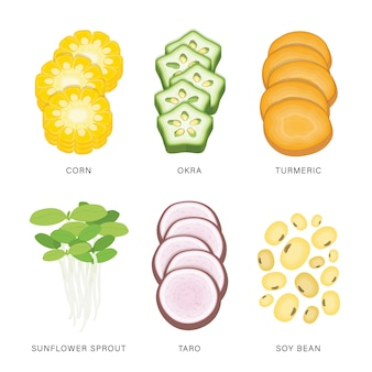 Conjunto de fatias de vegetais. alimento orgânico e saudável ilustração isolada do elemento.
