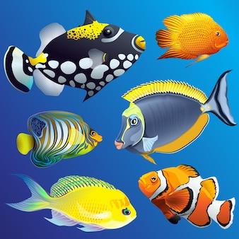 Conjunto de fauna subaquática exótica exótica realista