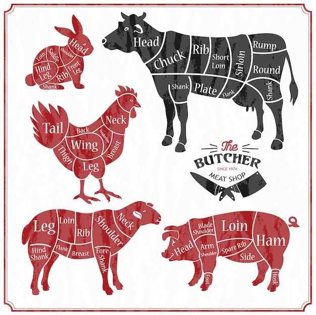 Conjunto de fazenda de animais. corte de carne, carne de porco, cordeiro, silhueta de frango.