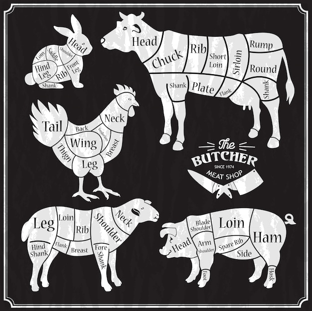 Conjunto de fazenda de animais. corte de carne, porco, cordeiro, frango.