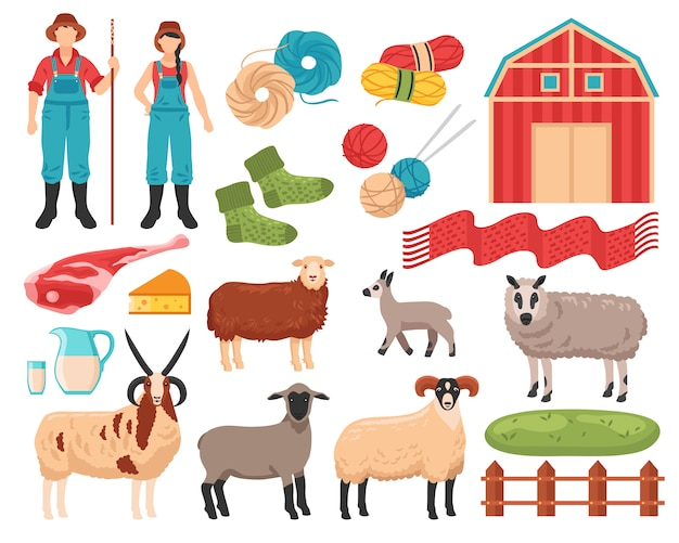 Conjunto de fazenda de criação de ovinos
