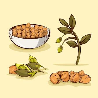 Conjunto de feijão e planta desenhado à mão