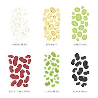 Conjunto de feijões e nozes. ilustração de alimentos orgânicos e saudáveis.