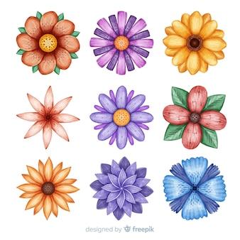 Conjunto de flor aquarela mão desenhada