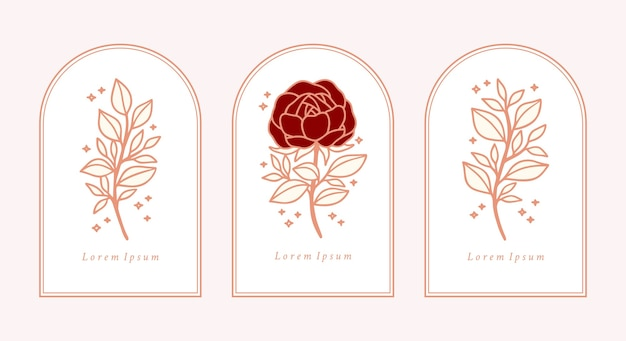 Conjunto de flor rosa botânica vintage desenhada à mão,