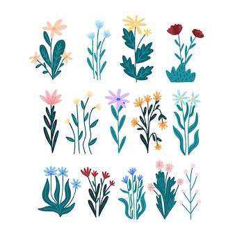 Conjunto de flores bonitas desenhadas à mão