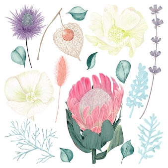 Conjunto de flores coloridas com folhas