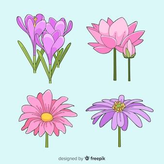 Conjunto de flores coloridas mão desenhada