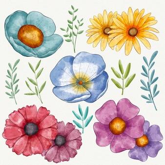 Conjunto de flores coloridas pintadas à mão