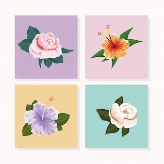 Conjunto de flores com folhas pintadas em molduras