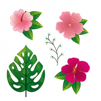 Conjunto de flores com folhas tropicais