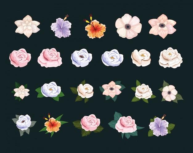 Conjunto de flores com pintura de folhas
