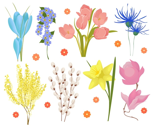 Conjunto de flores da primavera, açafrões, tulipas, narcisos, flocos de neve