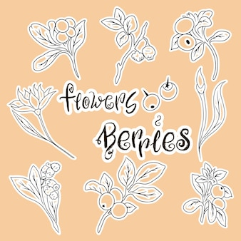 Conjunto de flores de desenho animado. ícones de bagas e flores. conjunto de ilustrações. temporada de verão. logotipo da comida.