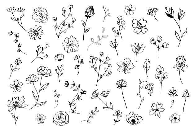 Conjunto de flores de mão desenhada