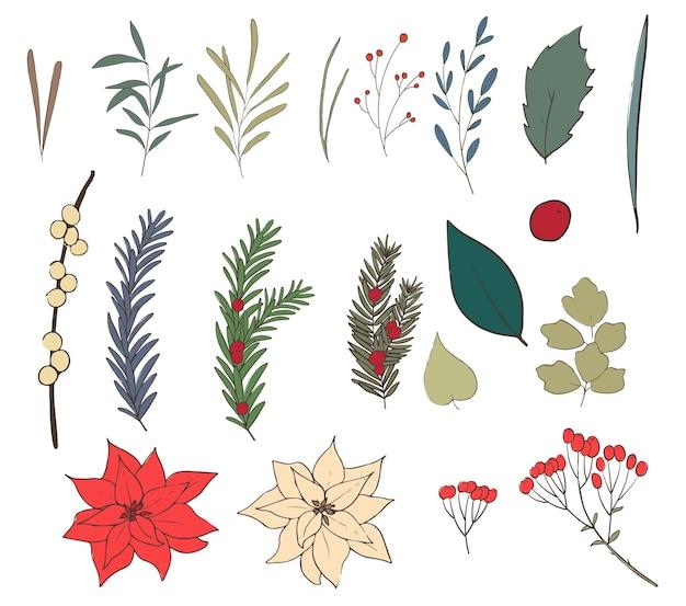 Conjunto de flores de natal. linha e cor. ilustração.