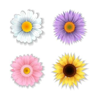 Conjunto de flores de papel arte.