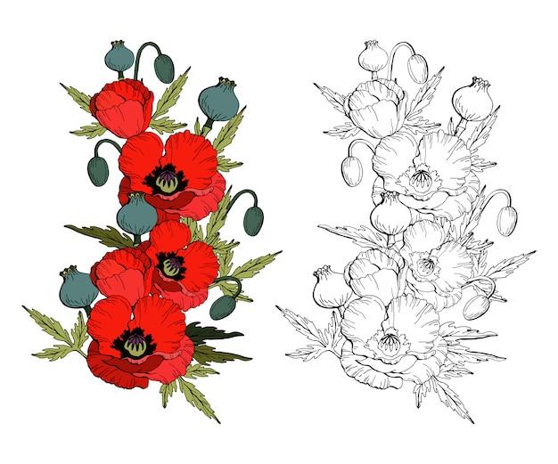Conjunto de flores de papoula papoilas vermelhas e cópia em preto e branco