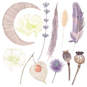 Conjunto de flores de penas de lua de inverno