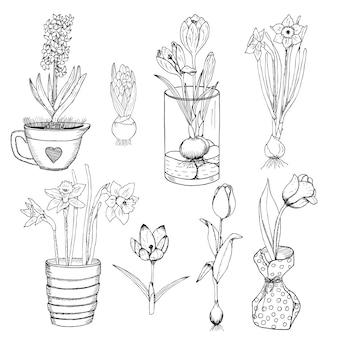 Conjunto de flores de primavera desenhadas à mão