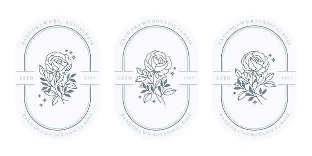 Conjunto de flores de rosa botânica azul vintage desenhada à mão e elementos de ramo de folha para logotipo feminino e marca de beleza