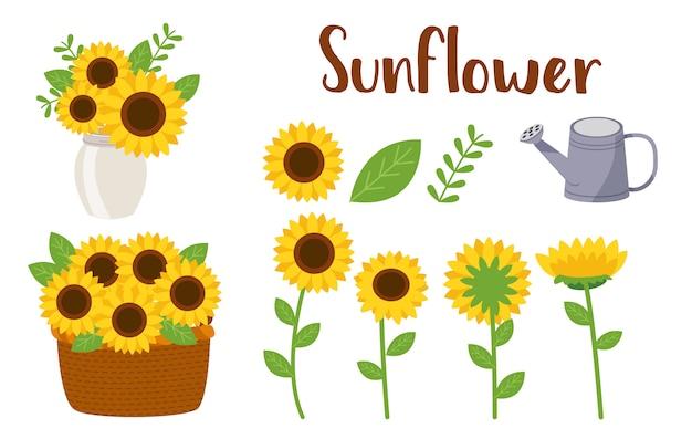 Conjunto de flores de sol