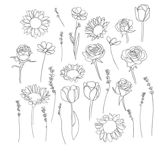 Conjunto de flores de uma linha estilo orgânico