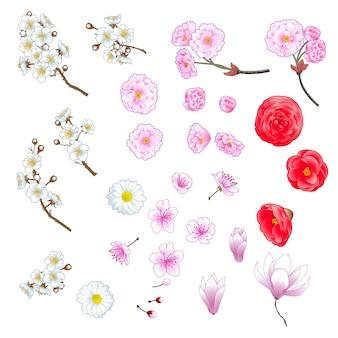 Conjunto de flores decorativas em estilo chinês