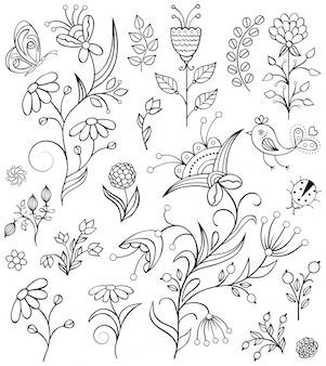 Conjunto de flores desenhadas mão em branco