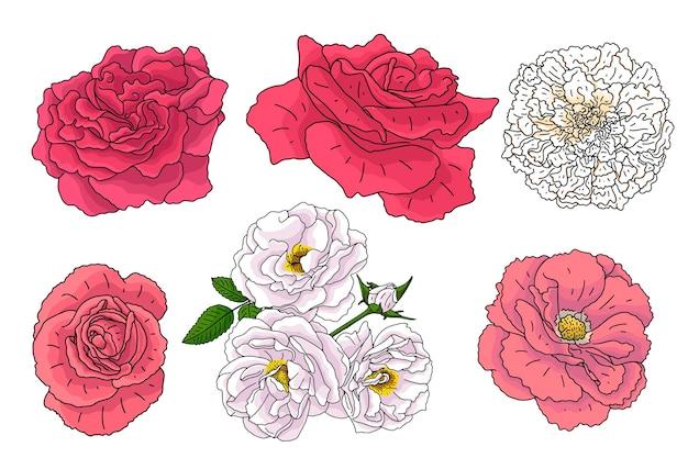 Conjunto de flores diferentes no estilo de desenho do doodle. elementos desenhados à mão