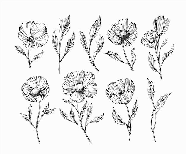 Conjunto de flores e folhas abstratas isoladas pretas, pacote de elementos florais desenhados à mão.