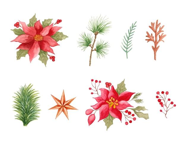 Conjunto de flores e folhas de natal em aquarela desenhada à mão para decoração