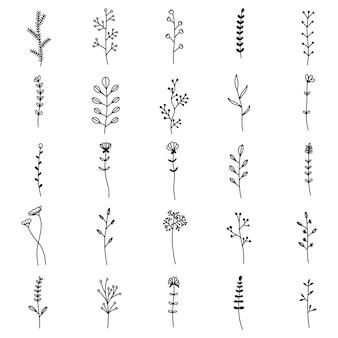 Conjunto de flores e folhas desenhadas à mão