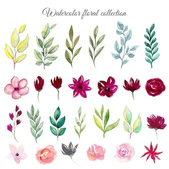 Conjunto de flores e folhas em aquarela