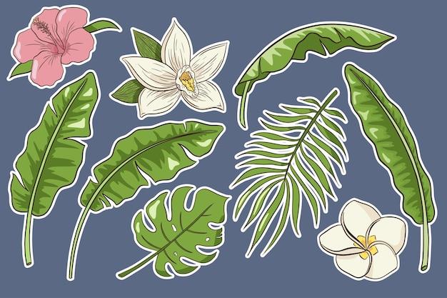 Conjunto de flores e folhas tropicais. adesivos. coleção de flores e plantas exóticas desenhadas à mão. folhas de banana, palmeira e monstera, hibisco, plumeria e flores de baunilha. vetor premium