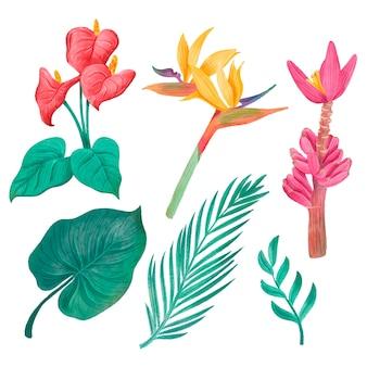 Conjunto de flores e folhas tropicais