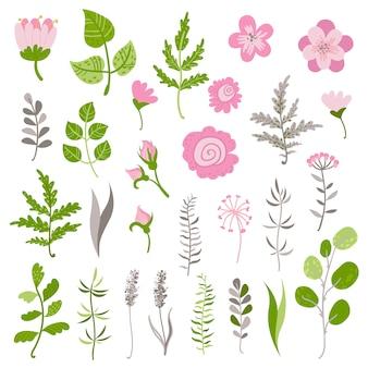 Conjunto de flores e galhos