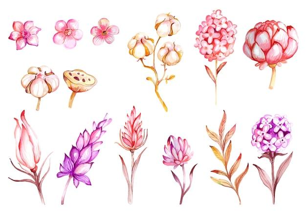 Conjunto de flores e joias em aquarela desenhada à mão