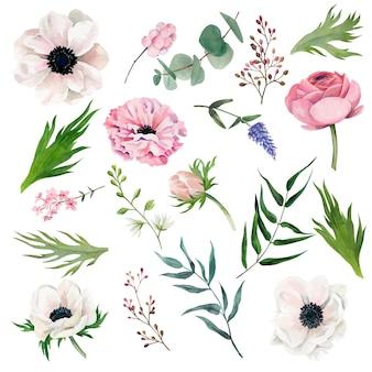 Conjunto de flores em aquarela com desenho de ilustração de folhas