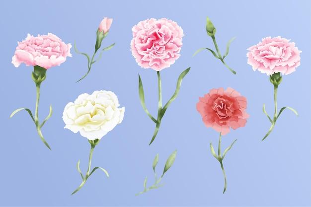 Conjunto de flores em aquarela de cravo