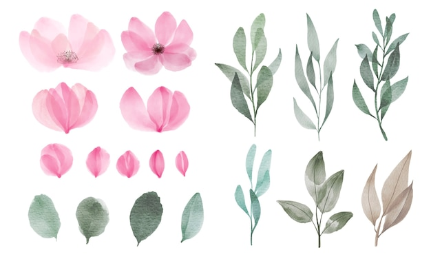 Conjunto de flores em aquarela e folhas para decoração de cartão de saudação e convite.