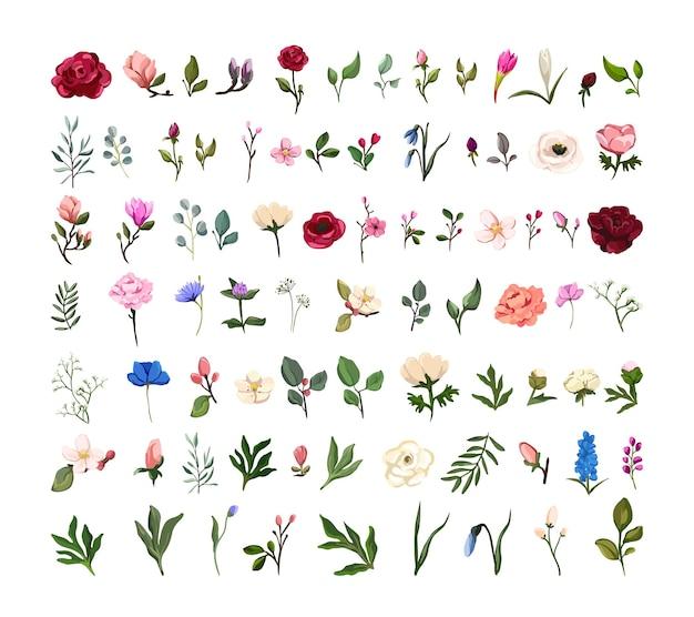 Conjunto de flores em aquarela, galhos, folhas.