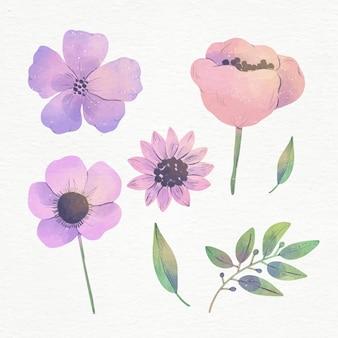 Conjunto de flores em aquarela pintadas à mão