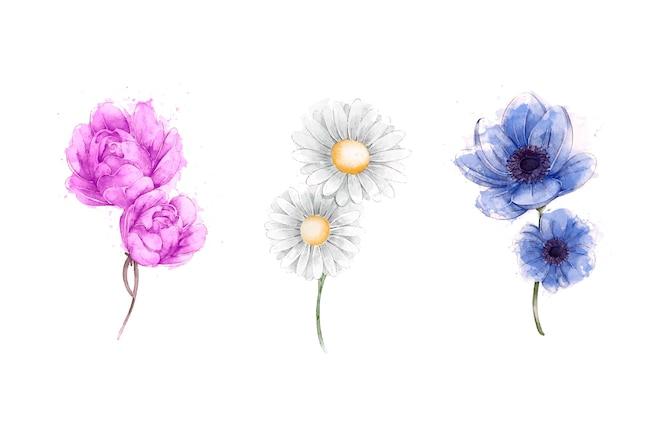 Conjunto de flores em aquarela primavera