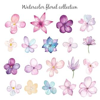 Conjunto de flores em aquarela