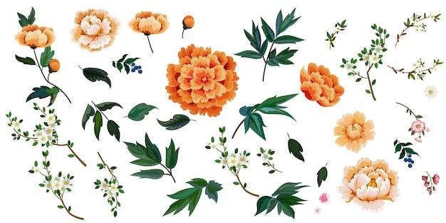 Conjunto de flores em estilo chinês